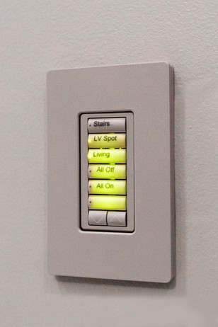 lights contro by lutron system