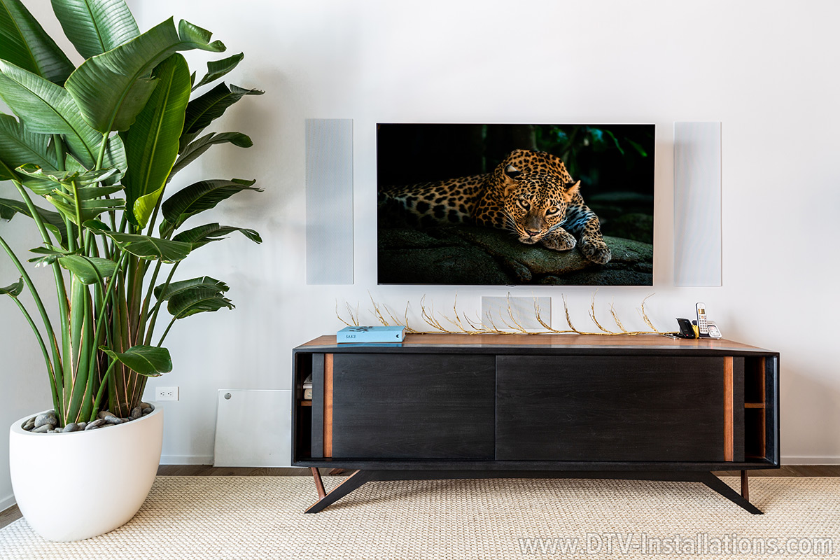 Professional Home Theater Samsung TV wall mounting installation